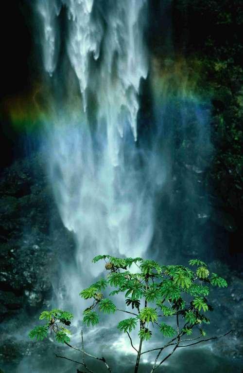 Big Island Hawai  top 10 des îles
